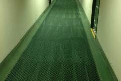 carpet cleaning services coral springs florida zebedee group 3