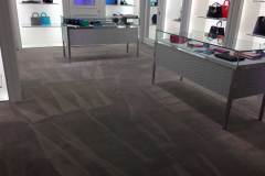 carpet cleaning services coral springs florida zebedee group 6