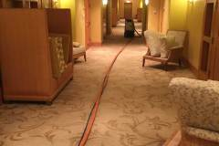 carpet cleaning services coral springs florida zebedee group 7