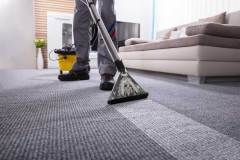 carpet-cleaning-coral-springs-zebedee-group-1