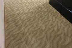 carpet cleaning services coral springs florida zebedee group 8