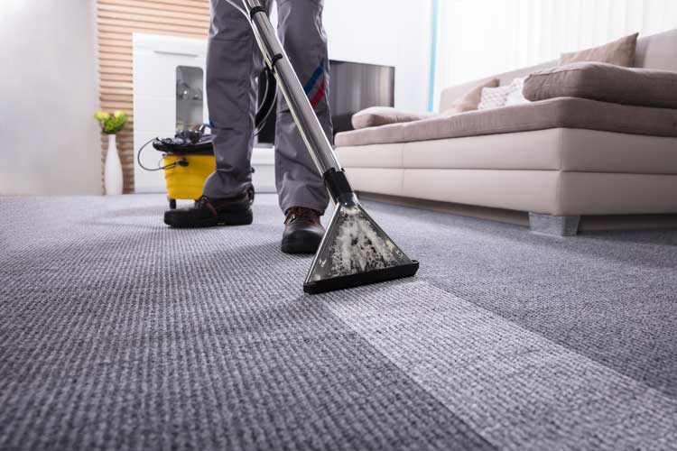 carpet cleaning coral springs zebedee group 1