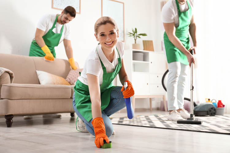 Hire Zebedee For Disinfecting Your Home