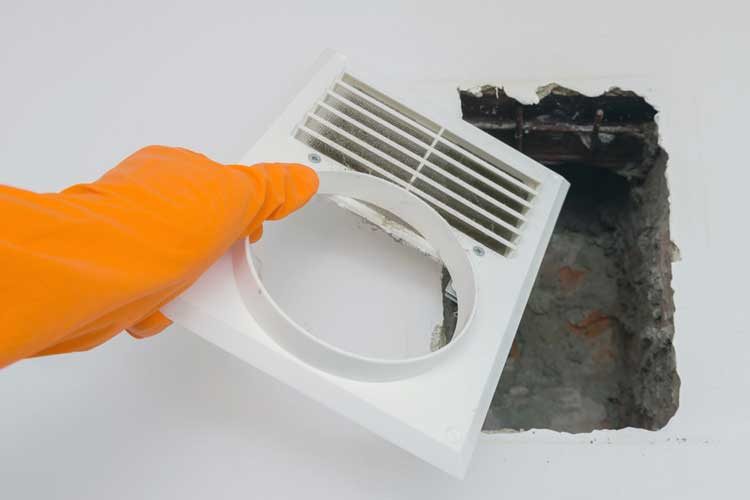 Professional Air Duct Cleaning Minimizes Indoor Bacteria and Mold Growth